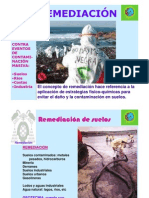 remediacion hidrocarburos
