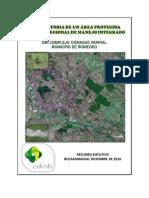 Resumen Ejecutivo DMI Complejo Papayal