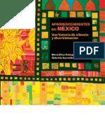 Velázquez, María Elisa y Gabriela Iturralde. Afrodescendientes en México. Una historia de discriminación