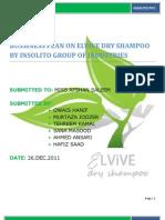 2010 Document Business Plan
