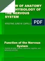 1a.anatomy Nervous