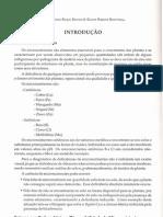 Micronutrientes - Nutrição Mineral de Plantas - FERNANDES, M. S. - SBCS