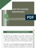 Indulto Por Razones Humanitarias
