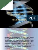 genetica-y-probabilidad-1210853234913046-8
