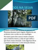 Perdidos Na Selva