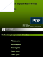 Clasificacin de Hortalizas1 120814115432 Phpapp01