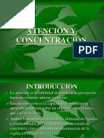 """ATENCIÃ""""N Y CONCENTRACIÃ""""N"""