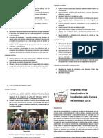 Programa Cecso 2013 Resumen