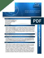 Curriculum Copiloto 2009