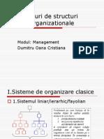Tipuri de Structuri Organizationale