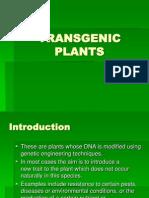 Transgenic Plants 1