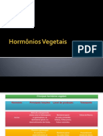 Hormonios Vegetais(Slide em construção)