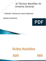 Ácidos Nucleídos