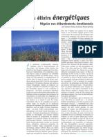 Generationtao Article Le b.a. Ba Des Elixirs Energetiques