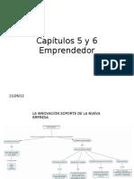 Capítulo 5 y 6 Emprendedor