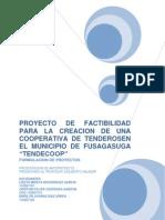 Formulacion de Proyectos Cooperativa de Tenderos FINAL[1]