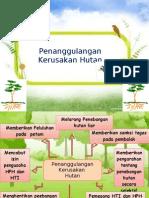 Penaggulangan Kerusakan hutan
