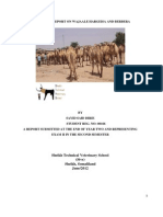 Sayid Said Dirie Wajale,Hargeisa and Berber Repor of Veterinary Service