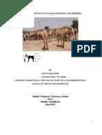 Sayid Said Dirie Wajale,Hargeisa and Berber Repor of Veterinary Service Istvs