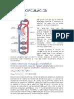 Tema 4. Circulación arterial