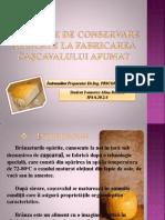metodele de conservare aplicate la fabricarea caşcavalului afumat
