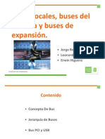 Buses Locales