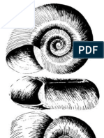 Genetic Characterization of Biomphalaria Arabica, The Molluscan Intermediate Host for Schistosomes in Saudi Arabia