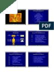 fundamentos del diagnostico por imagen
