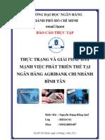Thuc Trang & Giai Phap Phat Trien the Tai Agribank Binh Tan