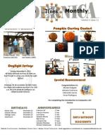 Newsletter- November 2012