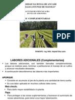 Clas. 4_Labores Complementarias