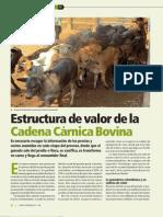11-Ind- Estructura de Valor de La Cadena Carnica Bovina