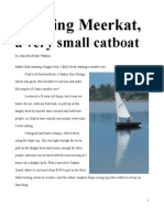 Building Meerkat, A Very Small Catboat