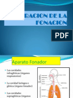 alteracion diapositivas