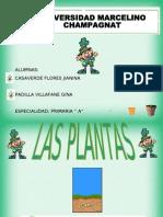 Webquests de Las Plantas