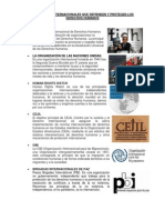 Organismos Internacionales Que Defienden y Protegen Los Derechos Humanos