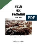 Neve em Panambi
