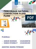 Natural Convection Flow