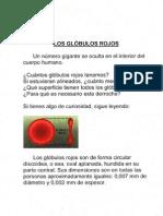 Globulos Rojos Xx