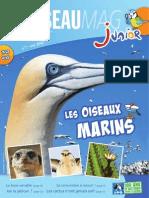 L'Oiseau Magazine Junior n°7 (Extrait)