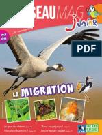 L'Oiseau Magazine Junior n°8 (Extrait)