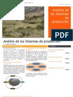 Sistemas_de_producción_ok