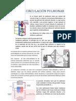 Tema 11. Circulación pulmonar