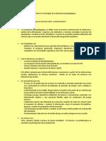 guía práctica 4.docx
