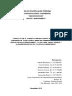 Proyecto Capacitacion Consejo Comunal Pueblo Nuevo