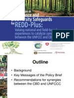 La Vina- Best Practices in Governance and Biodiversity Safeguards for REDD-Plus