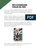 Las Ecorregiones Del Peru