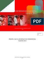 Profil Data Kesehatan Indonesia Tahun 2011