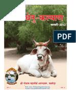 kamdhenu kalyaan pathmeda , Rajasthan Feb 2012