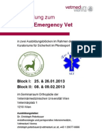 Fire Emergency Vet 201301 01